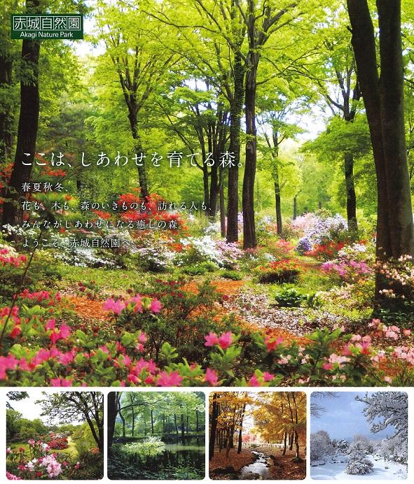 赤城 自然 園