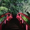 伊香保の河鹿橋の「新緑ライトアップ2021」